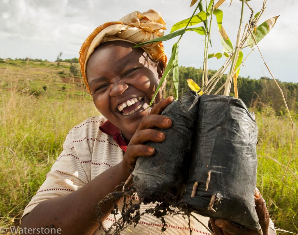 Planting 2013 smiling lady -4593