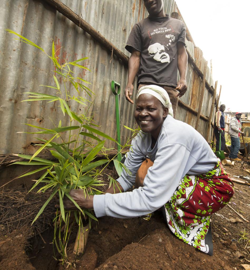 2015 nov slum lady planting -6302